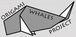 Origami Whales Project