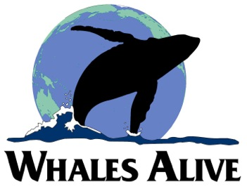Whales Alive